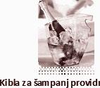 KIBLA ZA ŠAMPANJAC PROVOIDNA PLASTIČNA SA JEDNOM RUČKOM